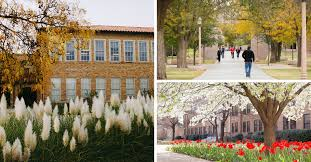 texas tech cus interior and environmental design ph d degree