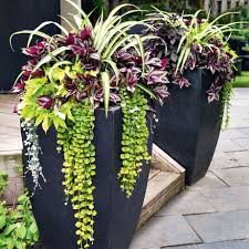 outside flower pots ideas how to makeover your front and backyard spider decoration innovative 922