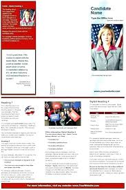 Free Political Themes For Campaigns And Fundraisers Sample