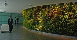 office interior vertical garden amazing office plants