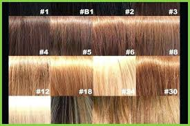Loreal Hair Dye Chart 28 Albums Of Loreal Hair Color Chart With Numbers Explore