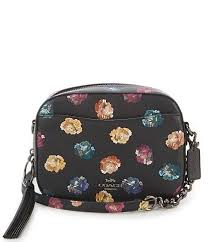 Coach Embellished Rainbow Rose Print Camera Cross-Body Bag