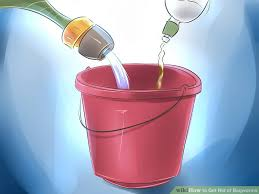 How To Get Rid Of Bagworms 14 Steps With Pictures Wikihow