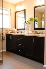 Dark Cabinet Bathroom What Type Of Paint To Use For Bathrooms