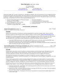 Chief Technology Officer Sample Resume Progress Programmer Sample