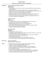 Wpf Developer Resume Sample WPF Developer Resume Samples Velvet Jobs 2