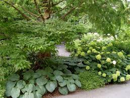 Small Picture 24 best Shade Gardens images on Pinterest Shade perennials