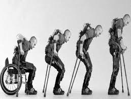 Bildergebnis für paraplegia images
