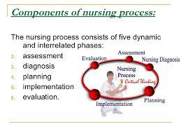 nursing assessment 4 components of nursing process