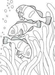 Small Picture Coloring Pages For Girls Animals Fish Animal Coloring pages of