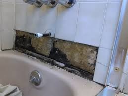 How To Remove Mold From Behind Shower Wall Image Bathroom 2017