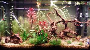 best led aquarium lighting reviews guide