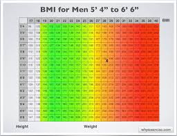 Weight Mass Chart Body Mass Index With Health Risk Charts And Illustrations