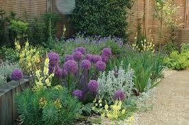 Small Picture Garden Border Ideas Sunset Borders Warm Color Garden Trends