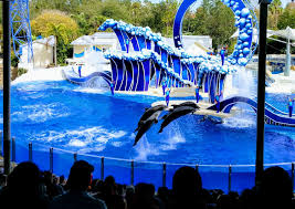 busch gardens tampa vacation packages. seaworld aquatica orlando busch gardens adventure island tampa discounted tickets vacation packages o