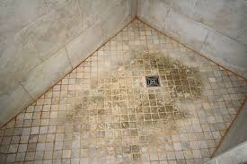 19 august 2018 shower stall cleaning