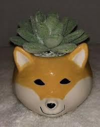 <b>1Pc Creative</b> Resin Corgi Succulent Plant Pots Mini Flower Pot ...