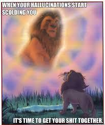 Scolding mufasa memes | quickmeme via Relatably.com