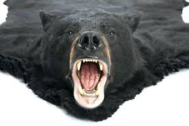 fake bear skin rug with head fake bear skin rug large size of decorating s winsome fake bear skin rug with head
