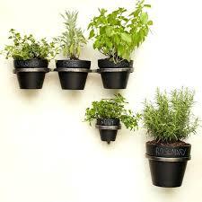 wall mounted flower pot holder terrarium design wall mounted pots for plants wall mounted plant holder pots cozy wall mounted wall mounted flower pot holder