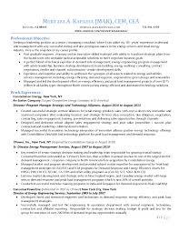 Sample Management Consultant Resume Sample Management Consulting Resume It Consultant Tips Example 13