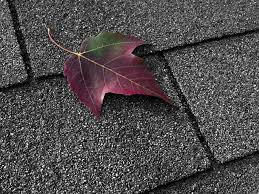 can you paint roof shingles