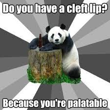 Pickup-Line Panda memes | quickmeme via Relatably.com