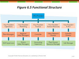 Example Of Functional Chart Instructor Lecture Powerpoints Ppt Download