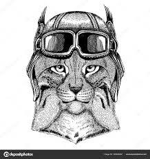 животных носить шлем летчика с очки векторный рисунок дикая кошка
