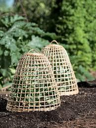 willow cloche for gardens gardener s