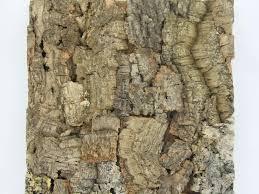 jelinek cork wall tile colorado
