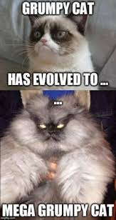 Grumpy Cat Humor on Pinterest | Grumpy Cat Quotes, Funny Grumpy ... via Relatably.com