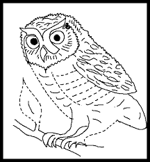 Small Picture Barn Owl coloring Free Animal coloring pages sheets Barn Owl