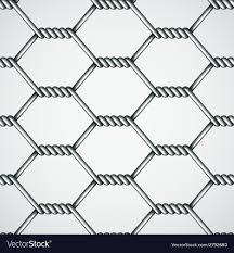 Chicken wire seamless background royalty free vector image