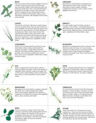 Printable Culinary Herb Chart Its Thyme For Some Tropical Fruit Salad Herbs Medicinal