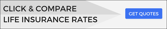 No Medical Exam Life Insurance Quotes Fascinating Best No Medical Exam Life Insurance Reviews [Top 48 Companies]