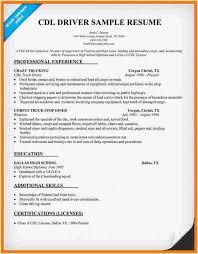Driver Sample Cv 28 Leading Uber Driver Resume Free Resume Templates