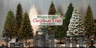 How To Buy Ceramic Christmas Tree Lights  EBayWhen Should You Buy A Christmas Tree