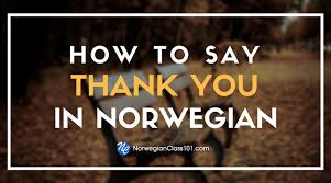 A b c d e f g h i j k l m n o p q r s t u v w x y z æ ø å. Learn The Norwegian Alphabet With The Free Ebook Norwegianclass101