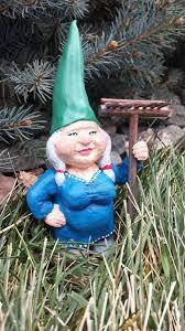 picture of garden gnome