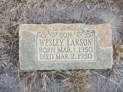 Wesley Larson (1950-1950) - Find A Grave Memorial