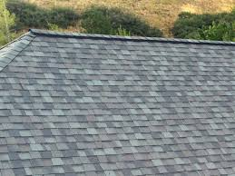 Vent System Ridge Vents Vs Turtle Vents Which Ventilation System Is Right