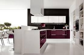 Best Kitchen Cabinet Brands Kitchen Best Kitchen Cabinet Brands Kitchen Cabinets Brands