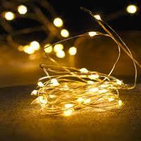 Battery string <b>lights</b>