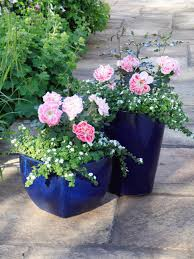 Rock Planters With Beautiful Plants And Flowers  Perfect To Mix Container Garden Plans Flowers