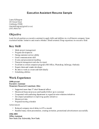 Examples Of Administrative Skills Summary For Resume Objective