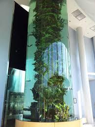 office aquarium. Vertical Aquarium - United Therapeutics Research Triangle Park, NC Office