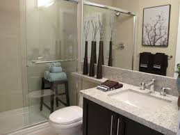 Parkside Estates - Master Ensuite Bathroom contemporary-bathroom