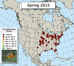 2017 Hummingbird Migration Chart Oriole Migration Map Monarch Butterfly Migration