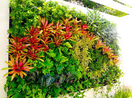 Small Picture Tropical Garden Wikiwandl tropical garden designs for small